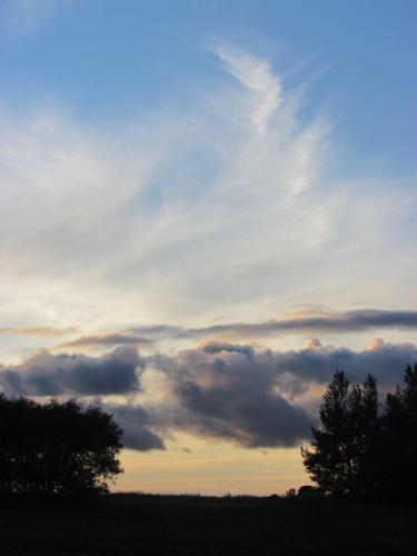 Endless Living Skies