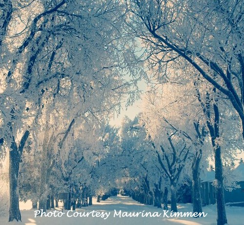 lifestyle-winterwonderland